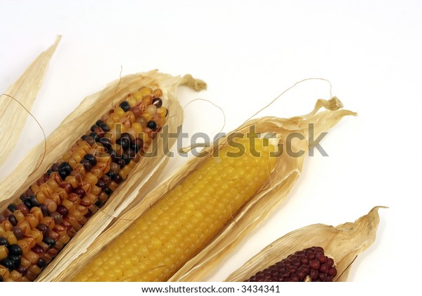 Colored corn ears
