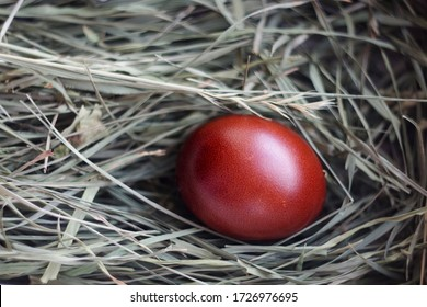 A colored Easter egg lies in a nest on green grass. Chicken egg in a straw nest. The chicken laid an egg. Natural organic homemade products. Happy easter card with copy space for text.