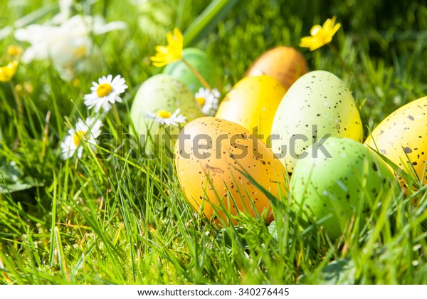 colored Easter eggs hidden in flowers and grass