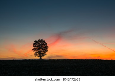Colored landscape at sunrise.