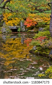Colored leaves of Ginkaku-ji Temple. The colored leaves which come into water. Jisho-ji Temple is known for a name of Ginkaku-ji Temple. Jisho-ji Temple is in Kyoto, Japan.
