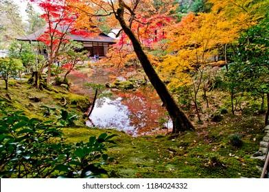 Colored leaves of Nanzen-ji Temple. Nanzen-Ji,also called Zuiryusan,is one of the most well-known Rinzai Zen temples in Japan. Nanzen-In is a branch temple of Nanzen-ji Temple.