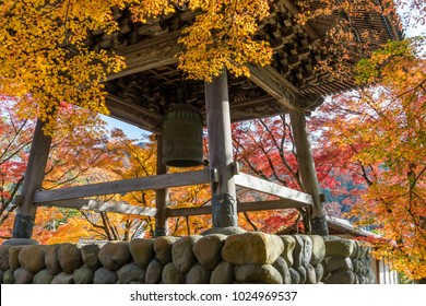Colored maple and Shuzenji bell tower