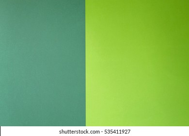 Colored paper green and greenery colour background