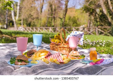Colored plastic dishes and fruit basket, outdoor picnic sandwiches in the park. Nice sunny day and summer lunch