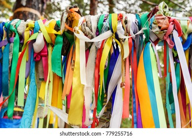 Colored ribbons to the Holy tree. Zalaal. Near Source of mineral water. Arshan. Buryatia. Russia
