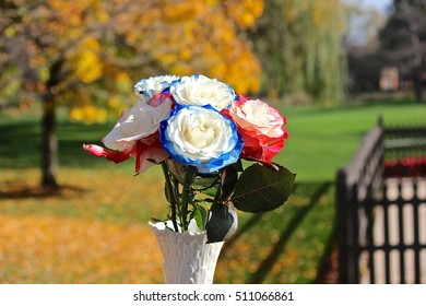 Colored roses in a vase outdoors with fall-autumn leaves in background