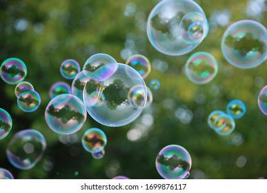 colored soap bubbles in nature