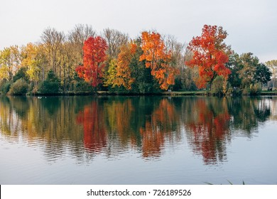 colored trees reflected in the water