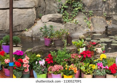 Colored vases with flowers on the rock (Kunming, Yunnan, China)