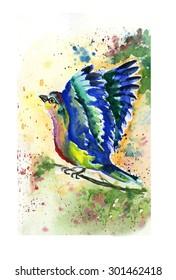 Colored watercolor bird