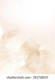 colorful abstract background in soft color style