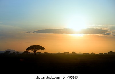 Colorful african landscape with silhouettes of acacia trees against vibrant african sunset at the foot of a volcano Kilimanjaro, Amboseli, Kenya.