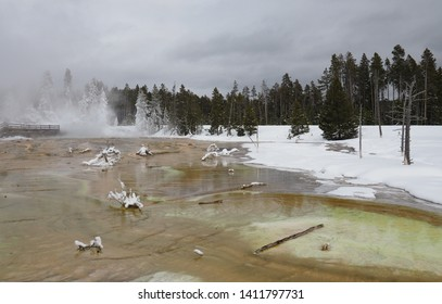 Colorful algae in the run off of Silex Spring in the Lower Geyser Basin in Yellowstone National Park in winter.