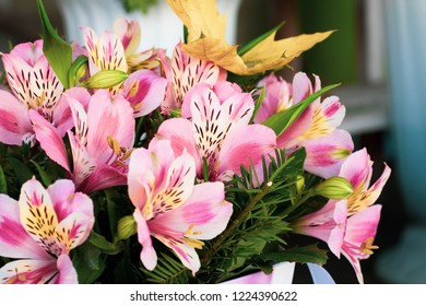 Colorful Alstroemeria flowers. A large bouquet of multi-colored alstroemerias in the flower shop are sold in the form of a gift box.