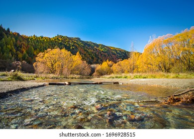 colorful arrow river and bushes, Autumnal Arrowtown New Zealand
