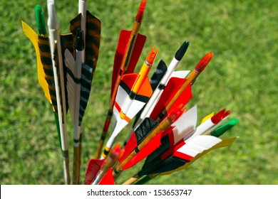 Colorful arrows for target archery in field