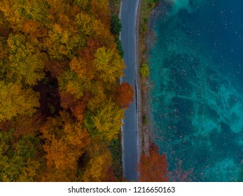 Colorful atumn forest and blue lake water.