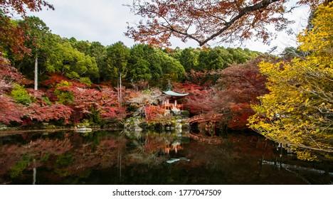 Colorful autumn at Daigoji temple,Kyoto.
