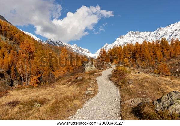 colorful-autumn-fall-seasononal-hiking-6