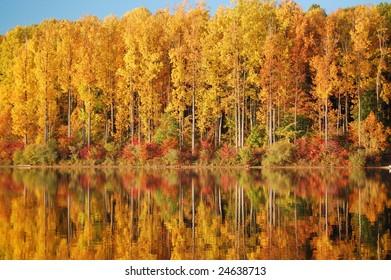Colorful Autumn Foliage Reflecting in Lake