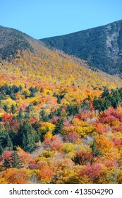 Colorful Autumn foliage in White Mountain, New Hampshire.