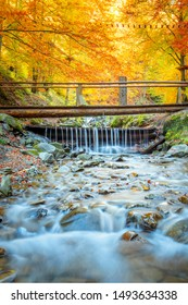Colorful Autumn in forest - colorful trees, small wooden bridge and fast river with stones, fall landscape