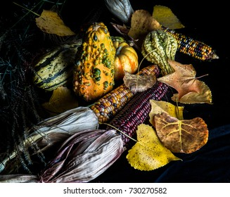 Colorful autumn gourds, leaves and corn