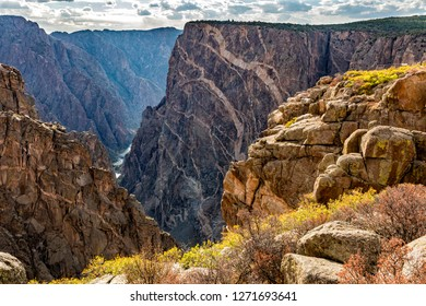 Colorful Autumn groundcover on the rim of the Black Canyon of the Gunnison National Park, Colorado.