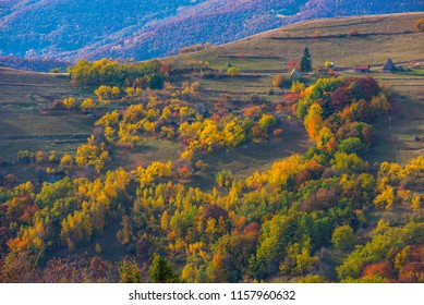 Colorful autumn landscape in the Apuseni mountains. Transylvania, Romania