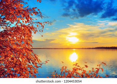 Colorful autumn landscape. Branches of birch on the shore of the lake in the rays of the setting sun.