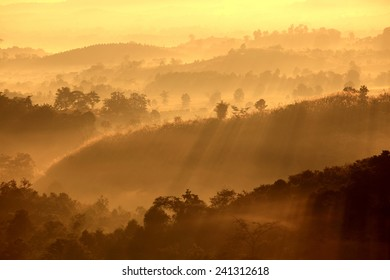 Colorful autumn landscape in the mountain village. Foggy morning and sunlight beautiful time
