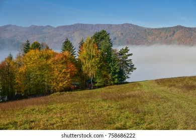 Colorful autumn landscape in the mountain village. Foggy morning in the Carpathian mountains. Slovakia, Europe.