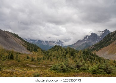 Colorful autumn landscape on a rainy hike outdoors in the Assiniboine Provincial Park Canada