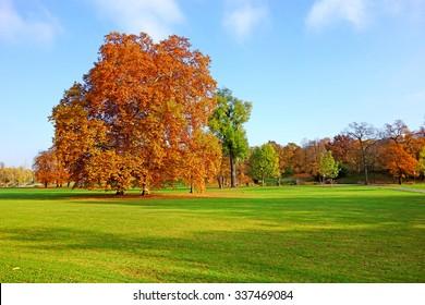 Colorful autumn landscape - vibrant trees in park, blue sky