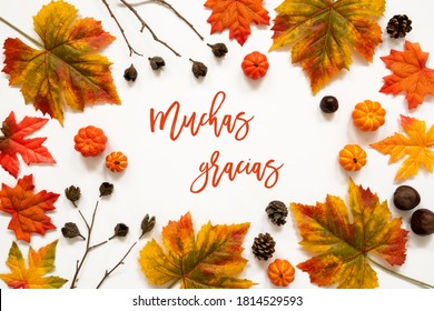 Colorful Autumn Leaf Decoration, Spanish Text Muchas Gracias Means Thank You