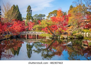 Colorful Autumn Leaf Season japanese garden in Japan