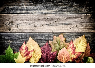 Colorful autumn leaves arranged on the bottom of the frame on old rustic wooden boards.   Filtered for a vintage retro look.