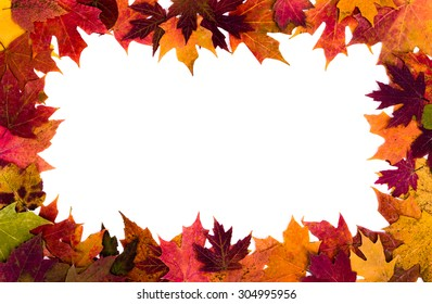 royalty free autumn leaves border images stock photos vectors