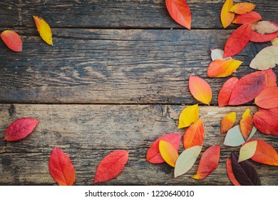 Colorful autumn leaves on rustic aged wooden surface background pattern.