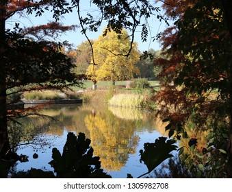 Colorful autumn magic