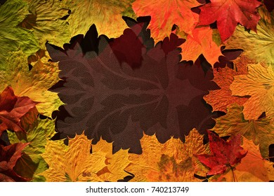 colorful autumn maple leaves on dark background