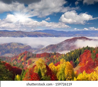 Colorful autumn morning in the Carpathian mountains. Sokilsky ridge, Ukraine, Europe..