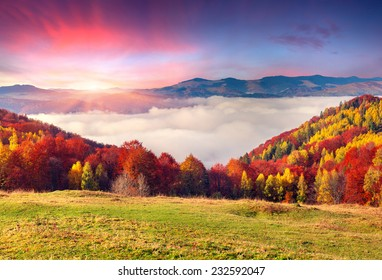 Colorful autumn morning in the Carpathian mountains. Sokilsky ridge, Ukraine, Europe.