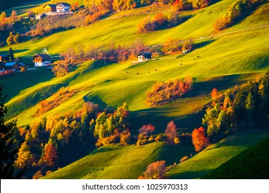 Colorful autumn mountain hill landscape scene in Dolomites, South Tyrol, Italy