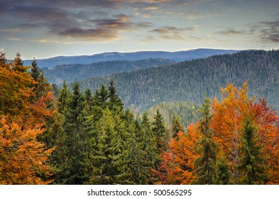 Colorful autumn mountain landscape in the sunset
