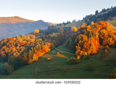 Colorful autumn mountain landscape at sunset.  Germany, Black Forest. Scenic travel background.