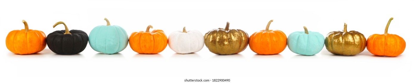 Colorful autumn pumpkins in a row isolated on a white background