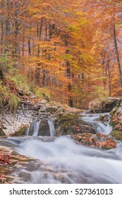 colorful autumn river falls forest