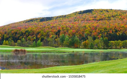 Colorful autumn scene with full of fall foliages  in white mountain, New Hampshire, USA